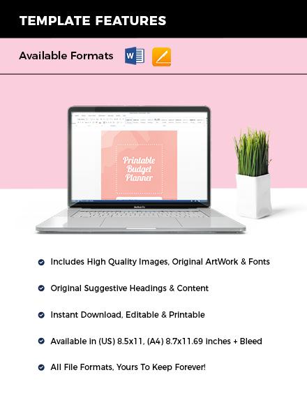 Printable Budget Planner Instruction