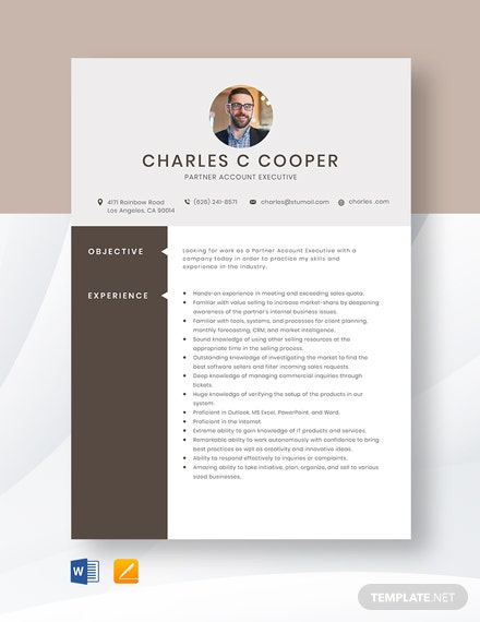 Partner Account Executive Resume Template