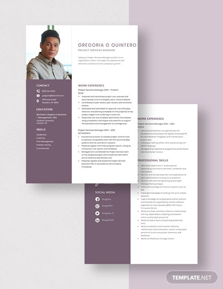 Project Services Manager Resume Download