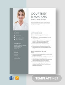 Generic Project Manager Resume Template