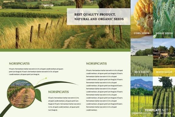 Free Agriculture Postcard Template.jpe