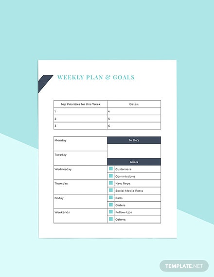 Direct Sales Business Planner Template