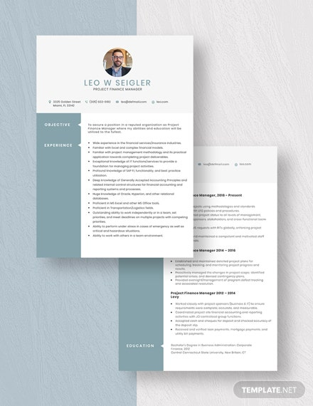Project Finance Manager Resume Download