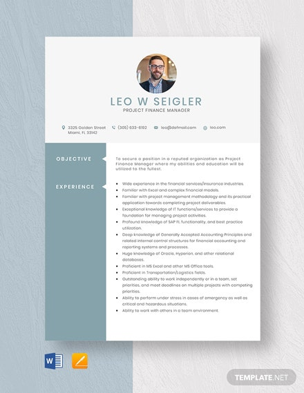 Project Finance Manager Resume Template