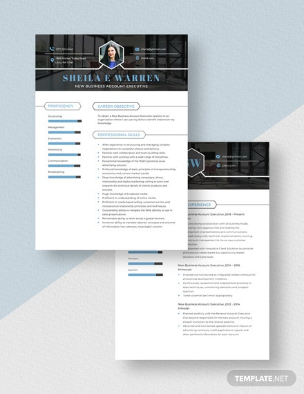 New Business Account Executive Resume Download