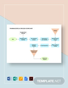 Pharmaceutical Process Flowchart Template