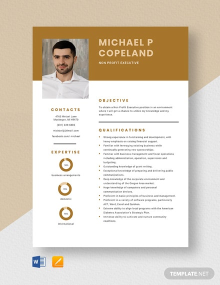 Non Profit Executive Resume Template