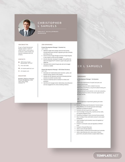 Project Development Manager Resume Download