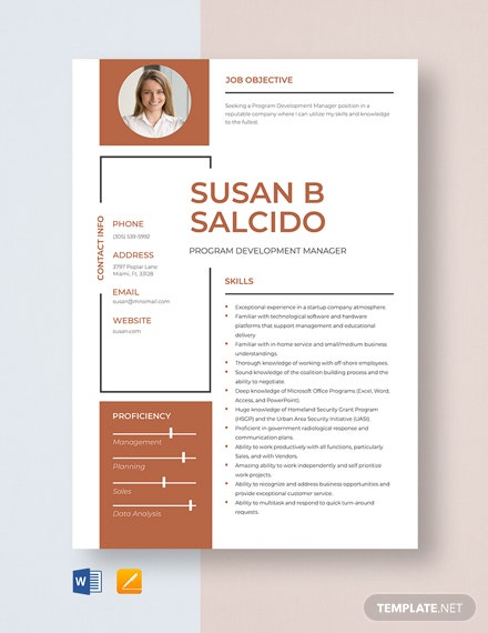 Program Development Manager Resume Template
