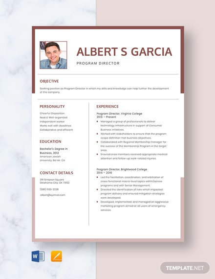 Program Director Resume Template