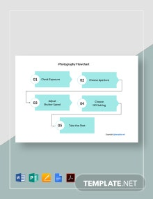 Sample Photography Flowchart Template