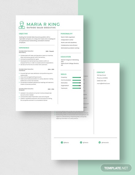 Outside Sales Executive Resume Download