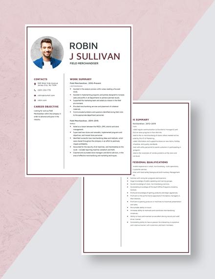 Field Merchandiser Resume Download