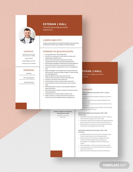 Outside Sales BB Account Executive Resume Download