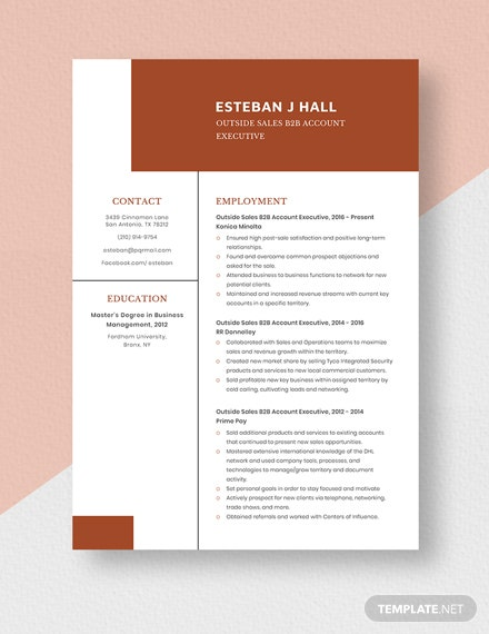 Outside Sales BB Account Executive Resume Template