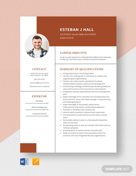 Outside Sales B2B Account Executive Resume Template