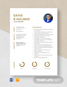 Flash Developer Resume Template