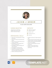 Flash Game Developer Resume Template
