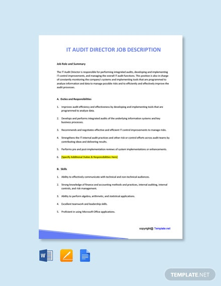 Free IT Audit Director Job Description Template
