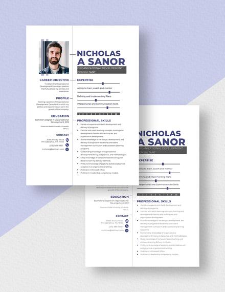 Organizational Development Consultant Resume Download