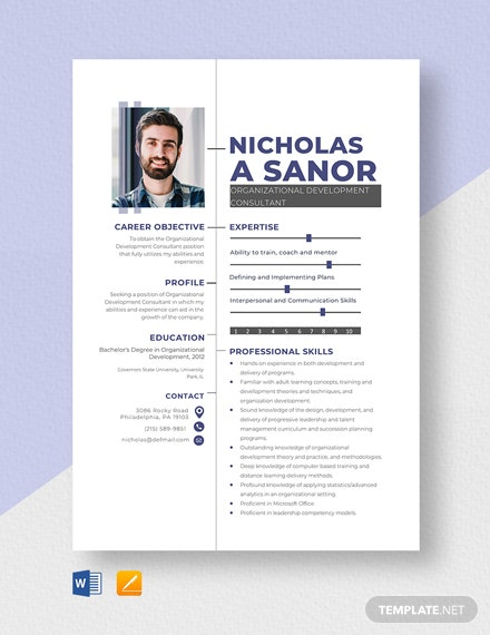Organizational Development Consultant Resume Template