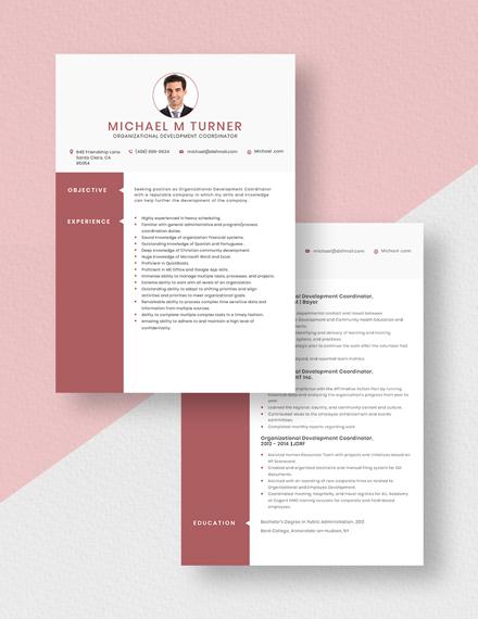 Organizational Development Coordinator Resume Download