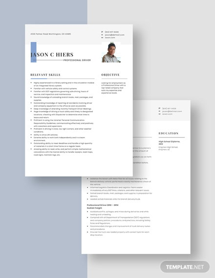 Professional Driver Resume Template [Free Pages] - Word, Apple Pages, PDF