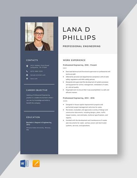 Professional Engineering Resume