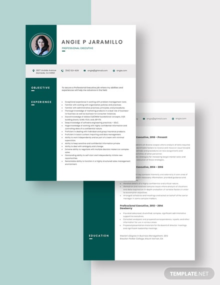 Professional Executive Resume Download