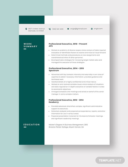 Professional Executive Resume Template
