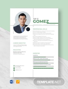 Professional Project Manager Resume Template