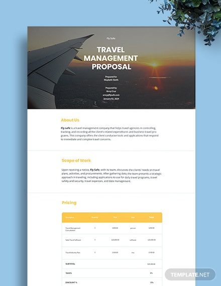 Travel Management Proposal Template