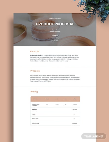 Professional Product Proposal Template
