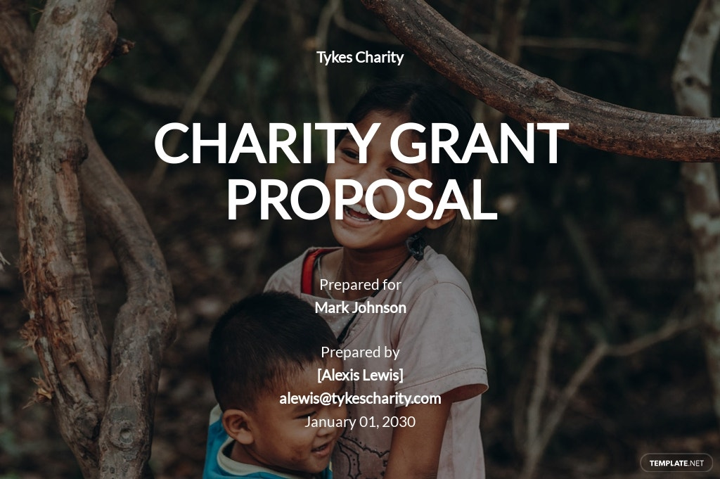 Charity Grant Proposal Template