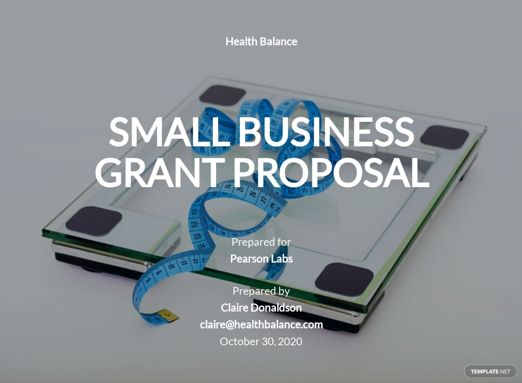 Small Business Grant Proposal Template.jpe