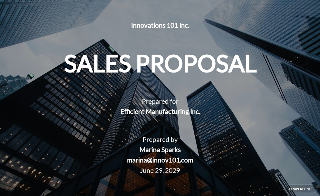 Modern Sales Proposal Template