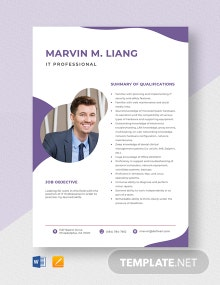IT Professional Resume Template