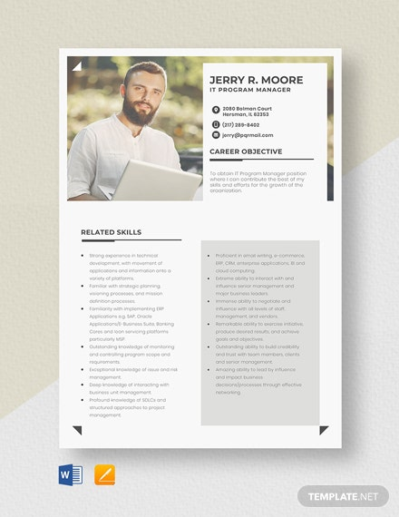 IT Program Manager Resume Template