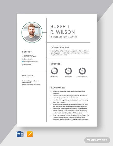 IT Sales Account Manager Resume Template