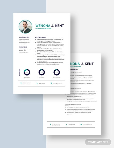 IT Services Manager Resume Download