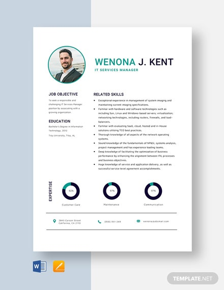 IT Services Manager Resume