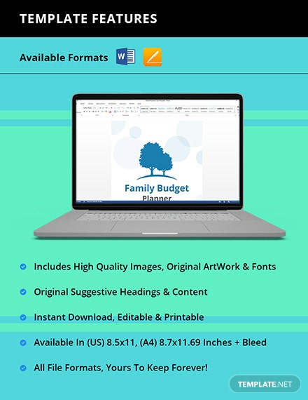 Family Budget Planner Template Instruction
