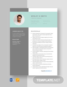 Free Financial Examiner Resume Template