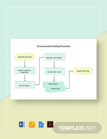 Environmental Auditing Flowchart Template