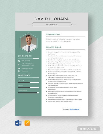 Free GCP Auditor Resume Template