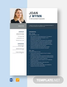 IT Development Manager Resume Template