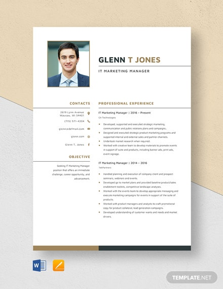 IT Marketing Manager Resume Template