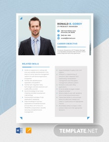 IT Product Manager Resume Template
