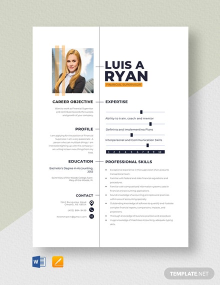 Financial Supervisor Resume Template