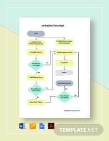 Example University Flowchart Template